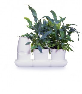 Minigarden Basic S Pots