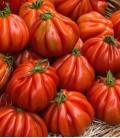 """Tomate """"Cuor di bue"""", Graines Biologiques Minigarden"""