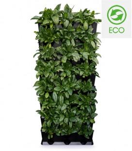 Minigarden Vertical Kitchen Garden Black ECO