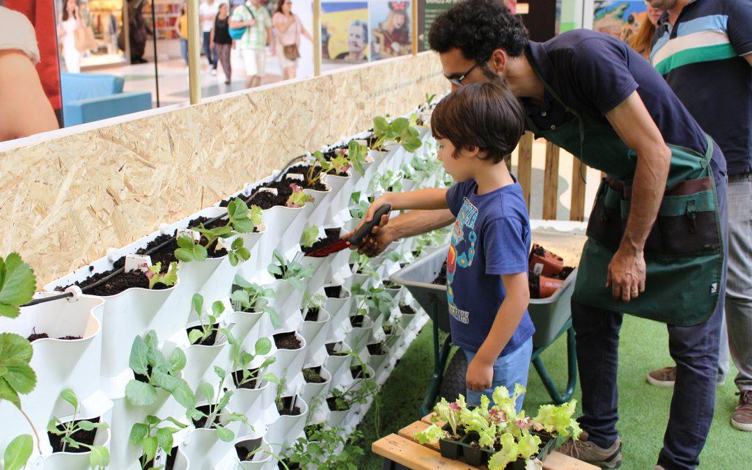 Ateliers d'Horticulture pour enfants et adultes – Potager Minigarden Vertical